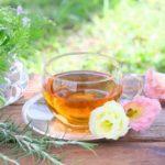 夏バテ予防の栄養素&美味しい水出し冷茶・お茶の淹れ方、作り方