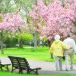 老後の暮らしは 施設or同居?サービス付き高齢者住宅はここをチェック!