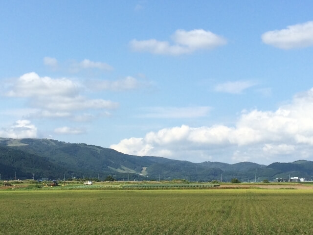 生産緑地・農地など土地活用